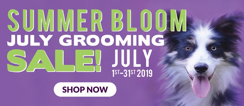 July Grooming Flyer