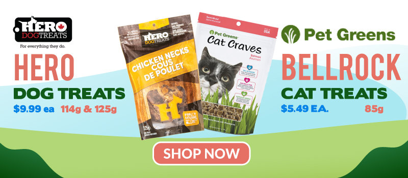 Shop Shop By Pet, Sale, Groomer Shop, and Shop by Condition