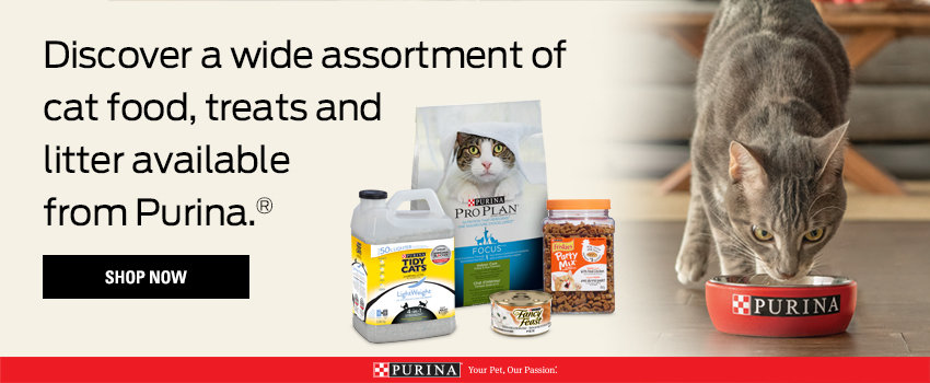 Purina Cat