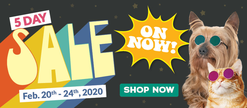 February Retail Sale On Now
