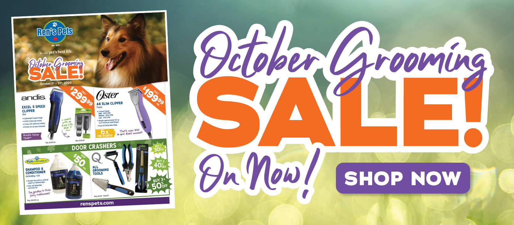 October Grooming Sale On Now