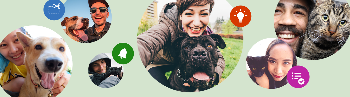 banner of pets and pet parents that links to petbasics.com
