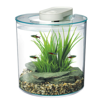 360 Degree Aquarium - 10 L