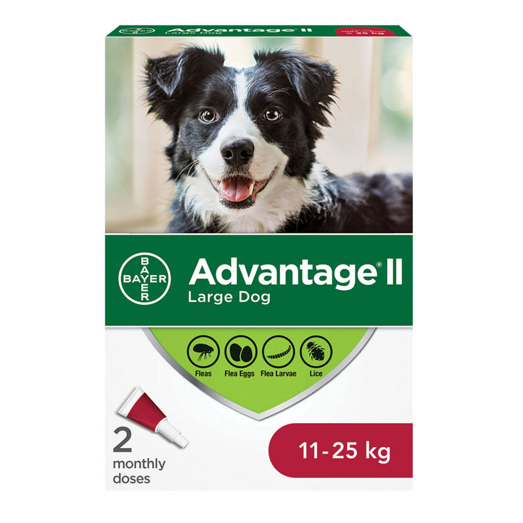View larger image of Advantage II - 11-25 kg