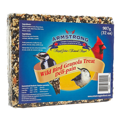 Granola Treat