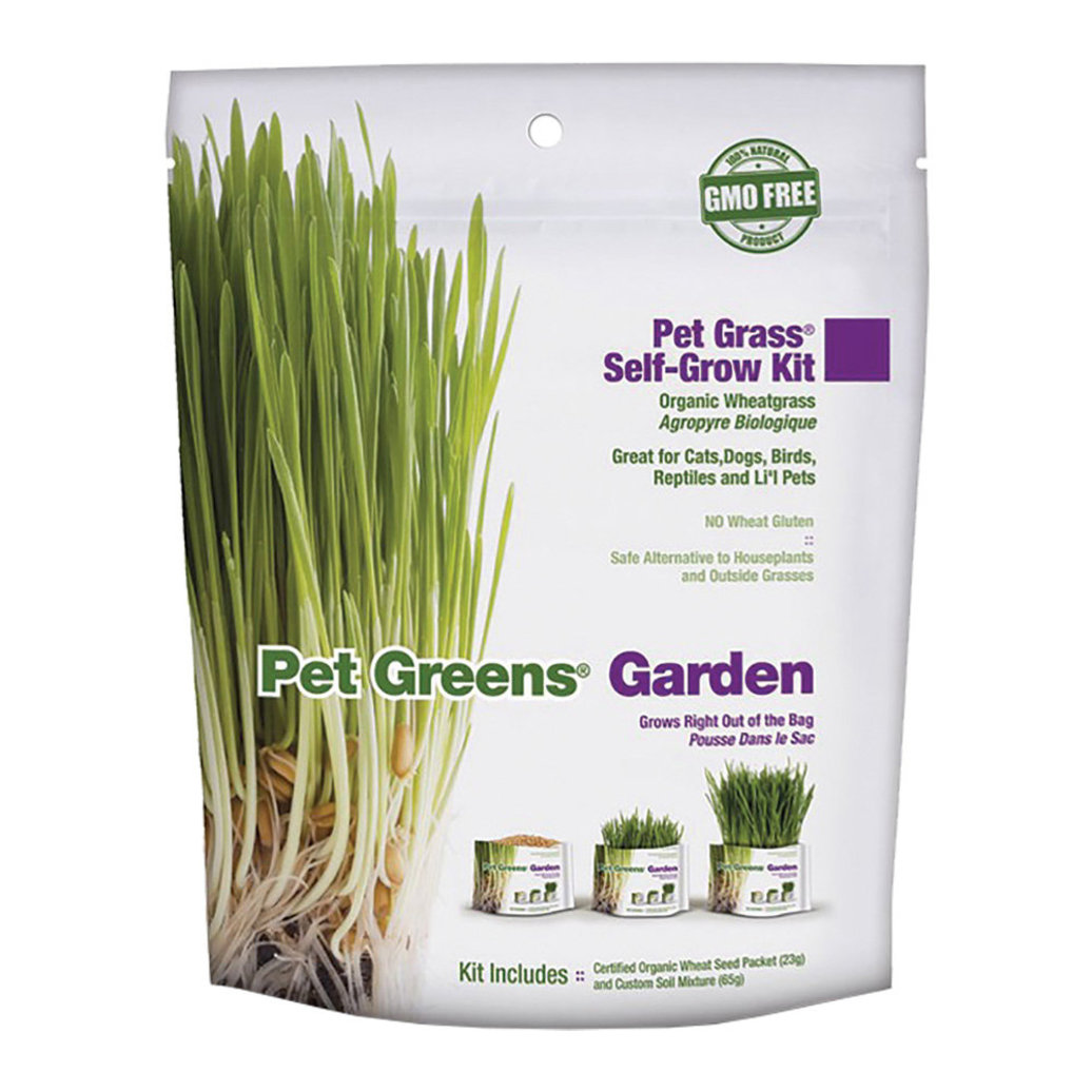View larger image of Bellrock, Wheat Grass Kit - 113 g