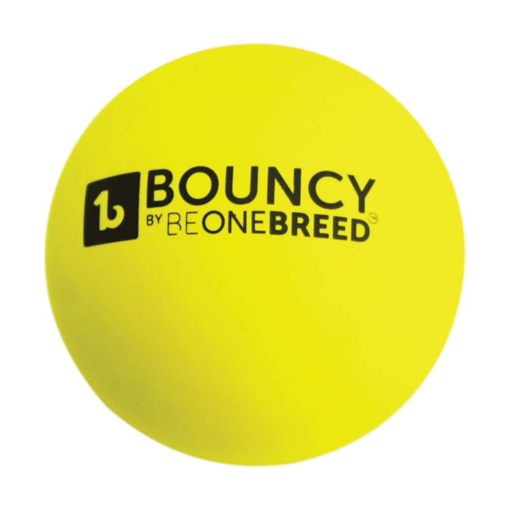 View larger image of Bouncy Ball