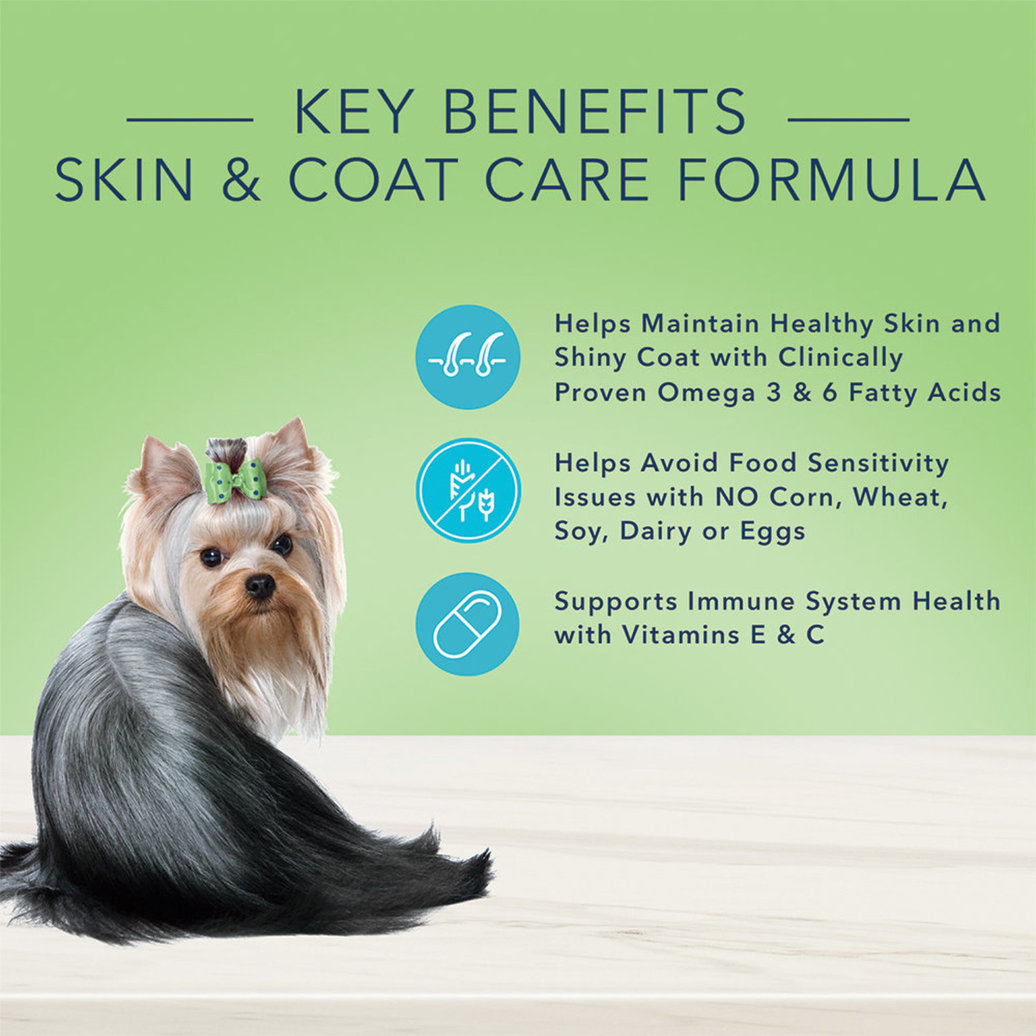 View larger image of Can, Adult - True Solutions - Skin & Coat - 354 g