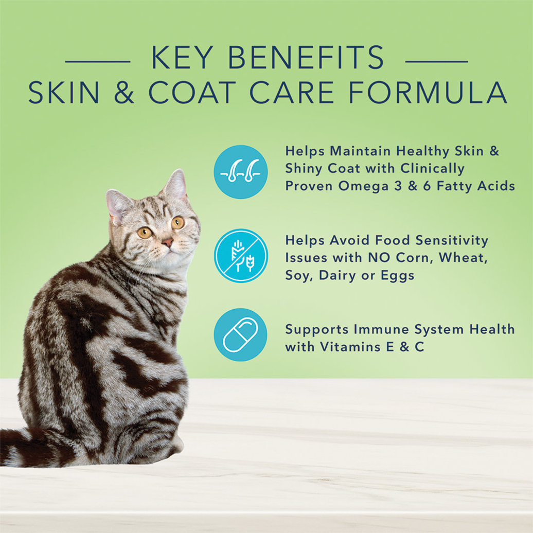 View larger image of Feline Adult - True Solutions - Skin & Coat - Salmon