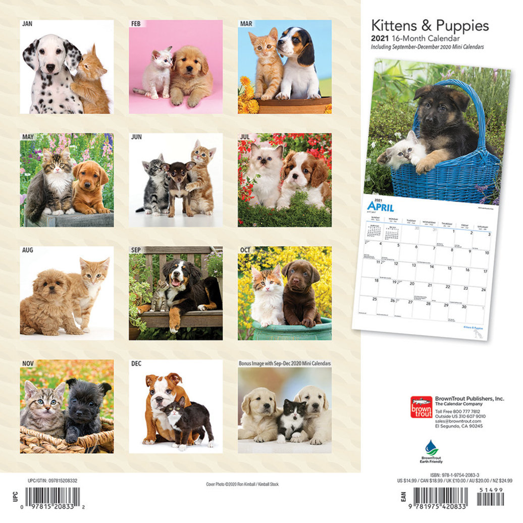 """View larger image of Calendar, 2021 Kittens & Puppies - 12x12"""""""