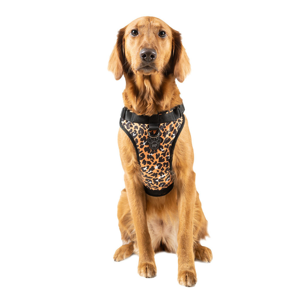 View larger image of Everything Harness - Leopard