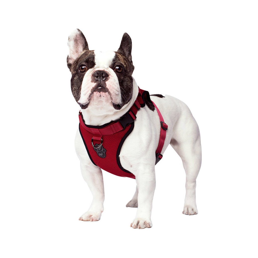 View larger image of Everything Harness - Red