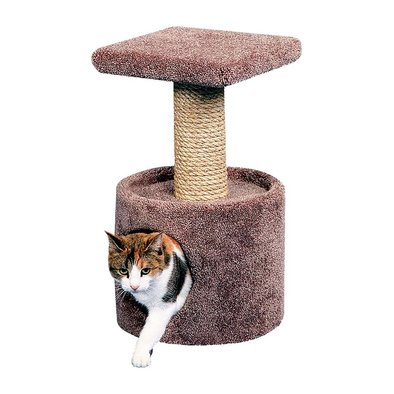 Cat Condo with Perch