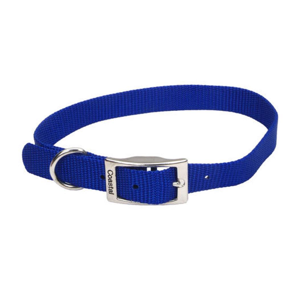 "View larger image of Collar - Blue - 3/4"" Width"