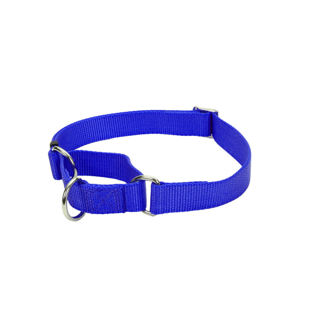 "View larger image of Collar - Martingale - Blue - 5/8"" Width - 14"""