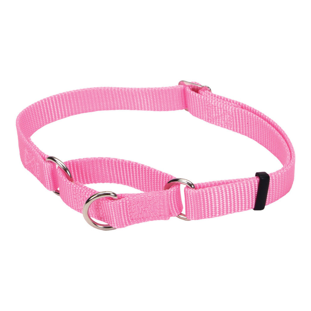 "View larger image of Collar - Martingale - Pink - 5/8"" Width - 14"""