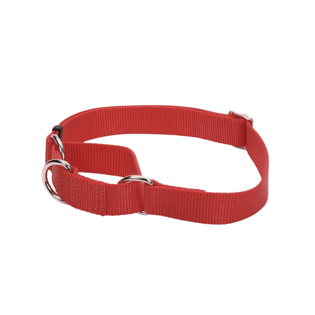 """View larger image of C - Martingale - Red - 3/4"""" Width - 14"""""""