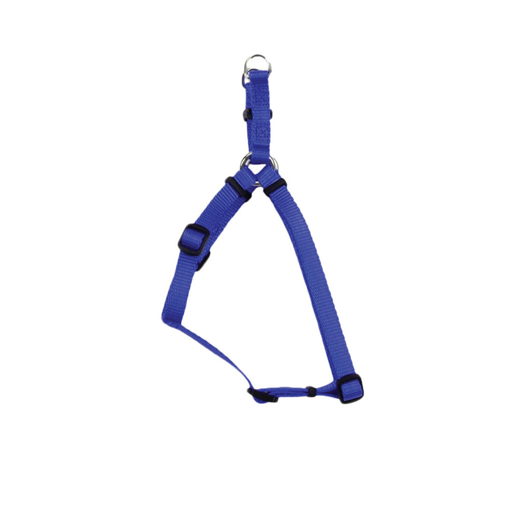 """View larger image of H - Blue - 5/8"""" Width - 16-24"""""""