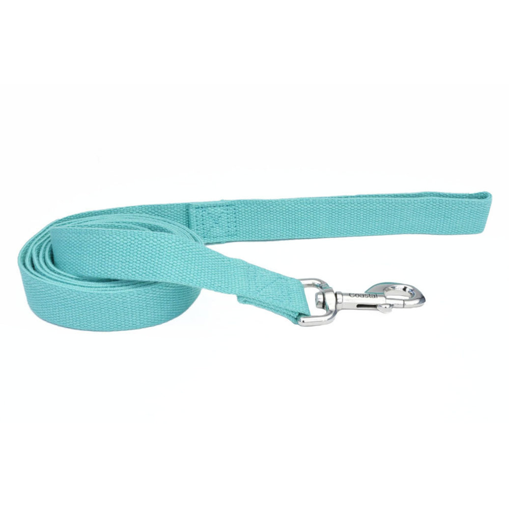 View larger image of Leash - New Earth Soy - Mint - 6'