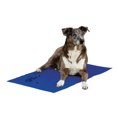 Coolin' Pet Pad - X-Large - 27x38""