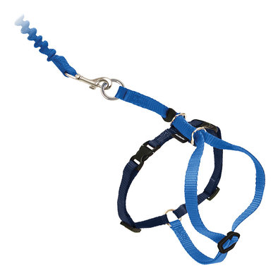 Come With Me Kitty Cat Harness & Bungee Leash - Royal Blue