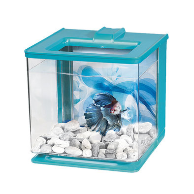 EZ-Care Betta Kit - Blue - 2.5 L
