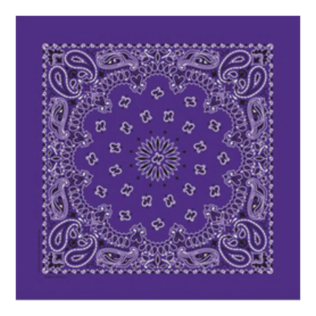 View larger image of Bandana - Purple Paisley