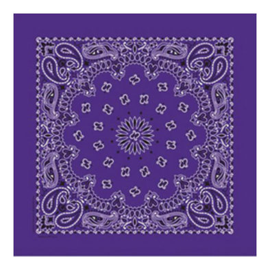 Bandana - Purple Paisley