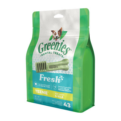 Mint - Teenie  - 12 oz