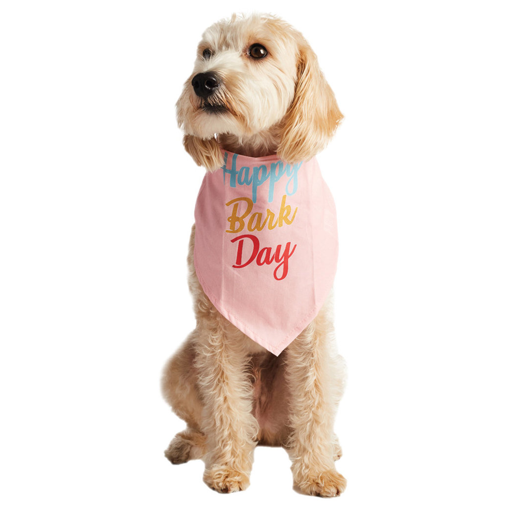 View larger image of Bandana - Happy Bark Day - Candy Pink