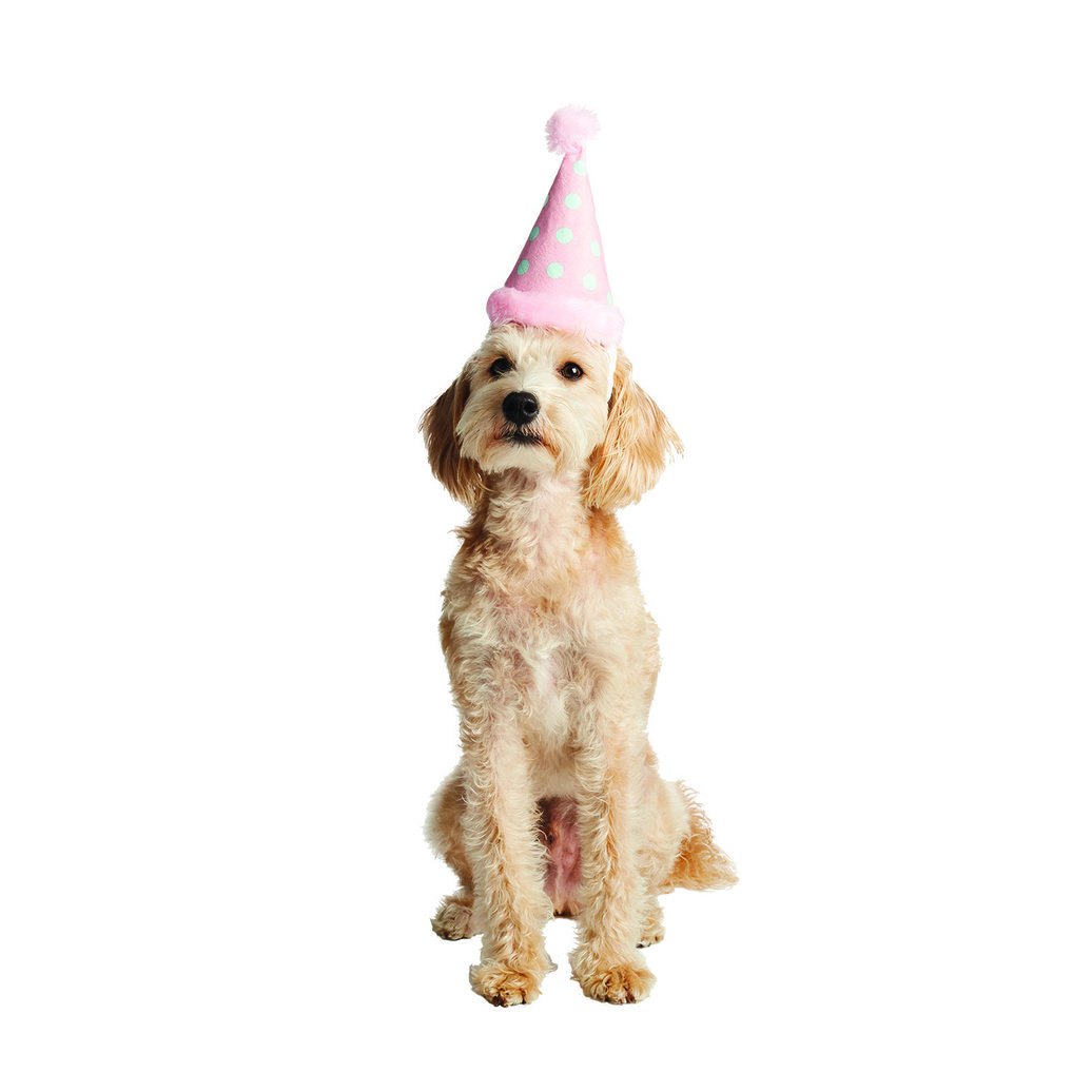 View larger image of Birthday Hat - Polka Dots & Pom Pom - Candy Pink
