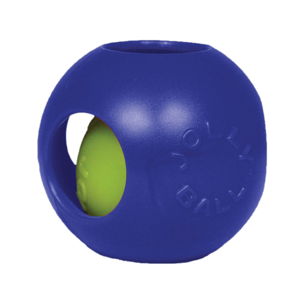 View larger image of Hard Plastic Toy, Teaser Ball - Blue