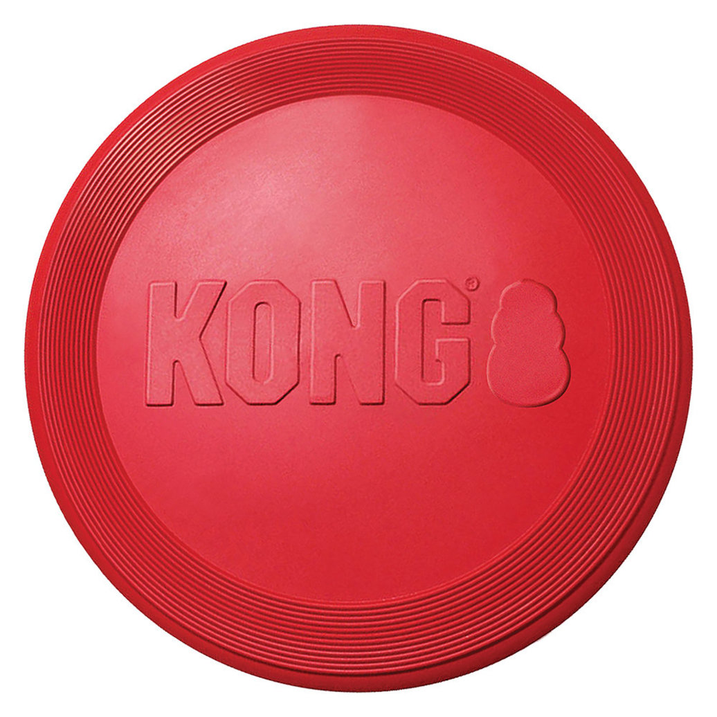 View larger image of Kong, Flyer Disc
