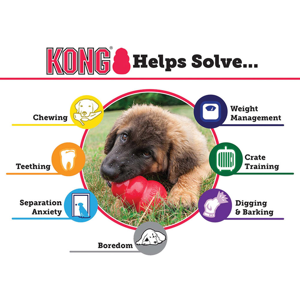 View larger image of KONG Classic - Red