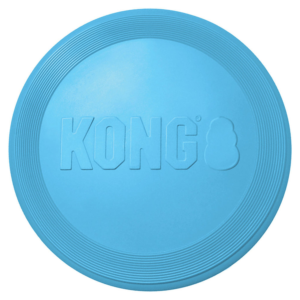 View larger image of KONG PUPPY FLYER DISC