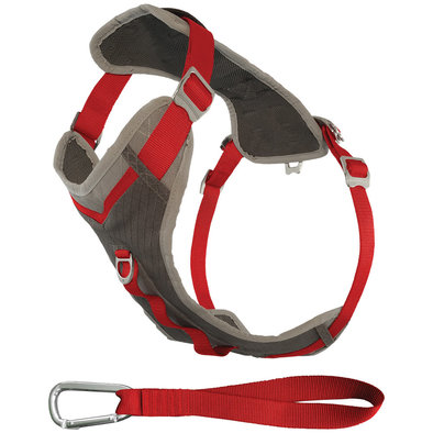 Journey Harness for Dogs - Charcoal/Red
