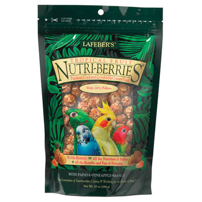 Tropical Fruit Nutri-Berries, Cockatiel - 10 oz