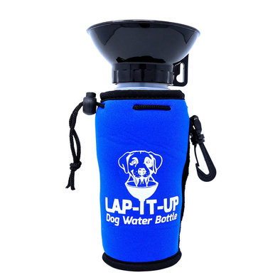 Water Bottle - Blue - 20 oz