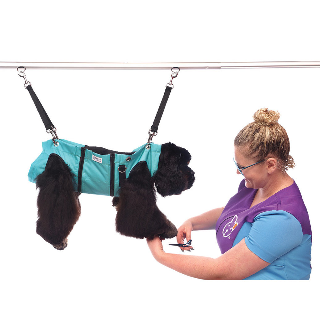 View larger image of Grooming Hammock - Turquoise