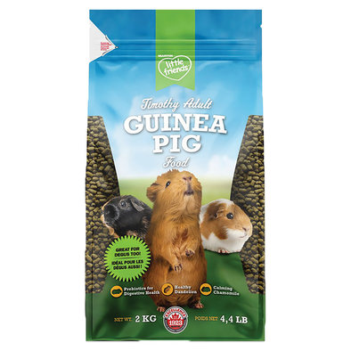 Lil Friend Timothy Adult Guinea Pig - 2 kg