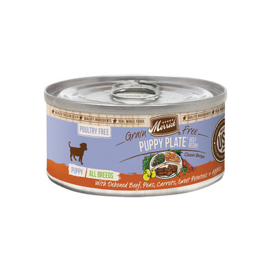 Can, Puppy Plate - Beef - 85g