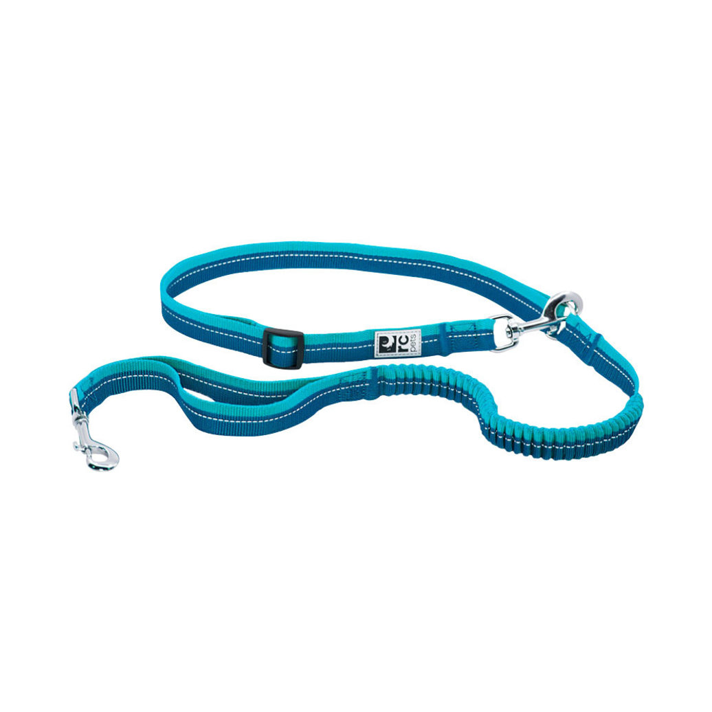 View larger image of Leash - Bungee Active - Arctic Blue/Teal
