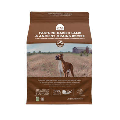 Pasture-Raised Lamb & Ancient Grains Adult Dog Dry Food