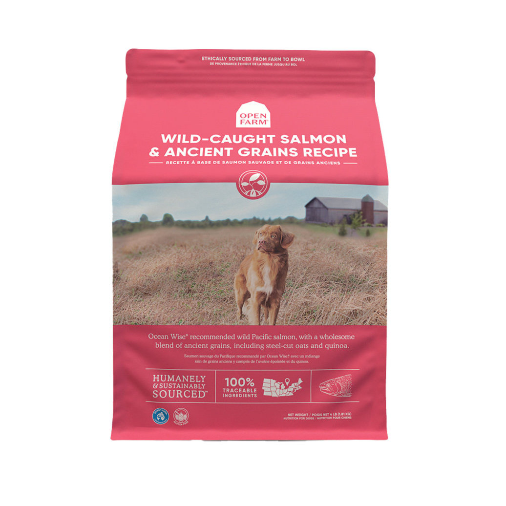 View larger image of Wild Salmon & Ancient Grains Adult Dog Dry Food