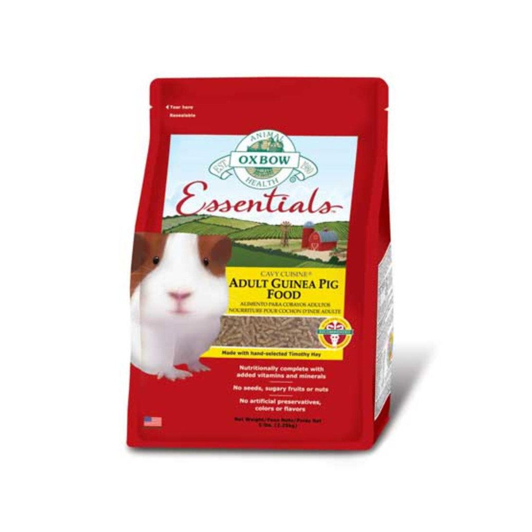 View larger image of Essentials, Adult Guinea Pig