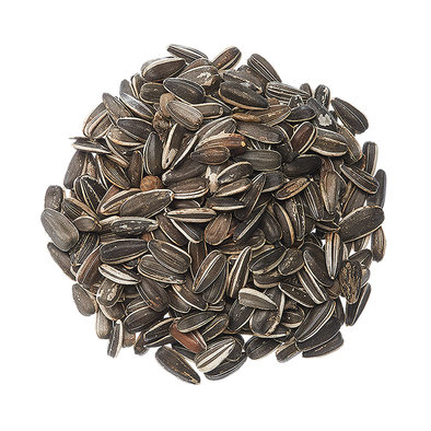 Striped Sunflower SDS - 50 lb