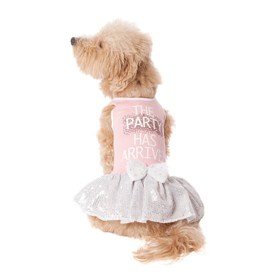 Party Has Arrived Tutu Dress - Pink