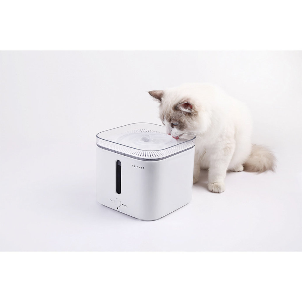 View larger image of Pet Fountain - White