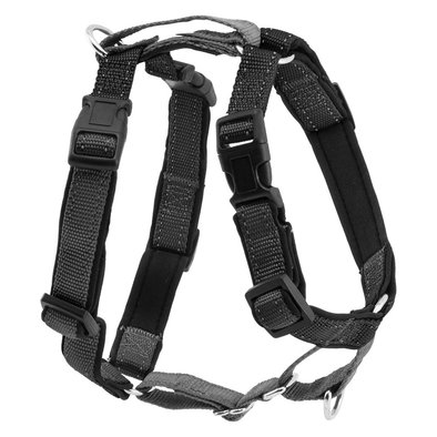 3 In 1 Harness & Car Restraint- Black