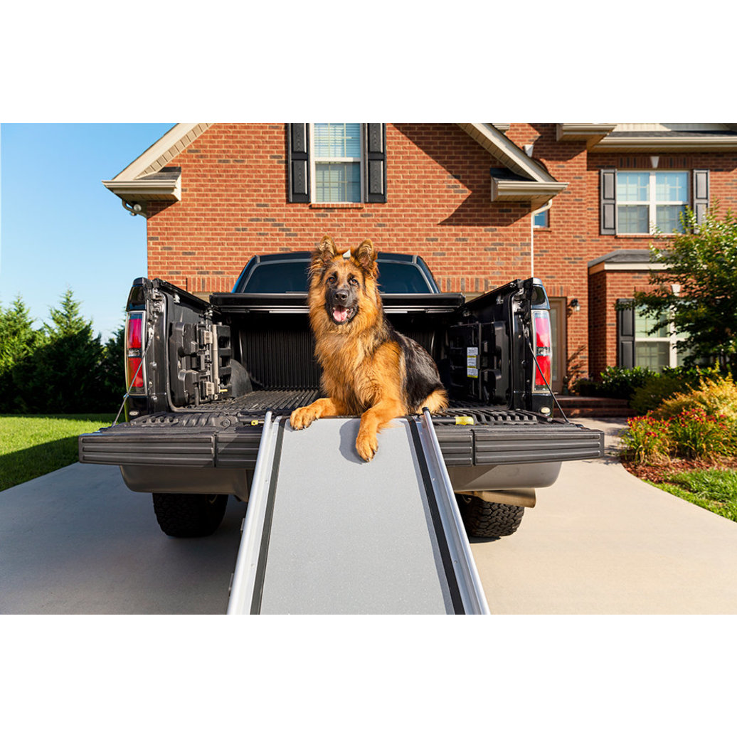 View larger image of Telescoping Dog Ramp - Extra Long